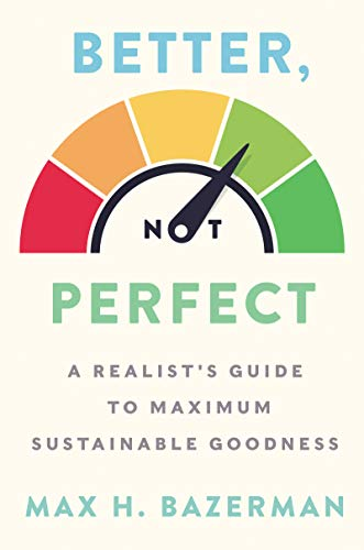 Better, Not Perfect: A Realist's Guide to Maximum Sustainable Goodness (Hardcover)