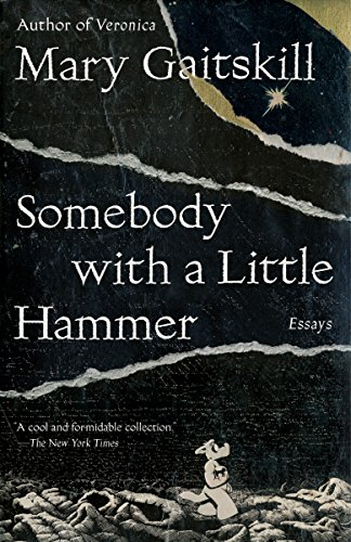 Somebody with a Little Hammer
