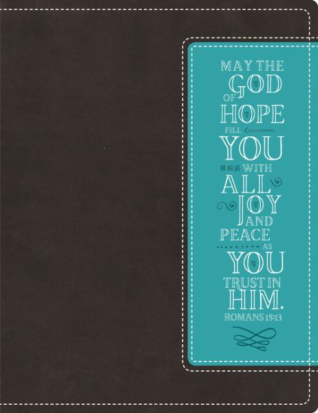 NIV Beautiful Word Bible (Chocolate Turquoise Italian Duo-Tone)