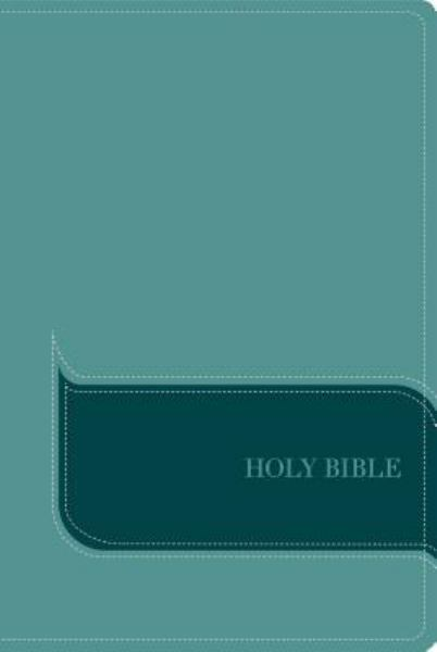 NIV Understand The Faith Study Bible (Turquoise Italian Duo-Tone)