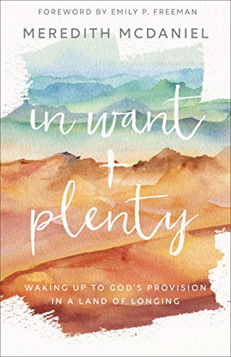 In Want + Plenty: Waking Up to God's Provision in a Land of Longing