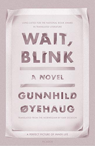 Wait, Blink: A Perfect Picture of Inner Life