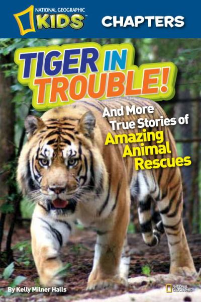 Tiger in Trouble! (National Geographic Chapters)