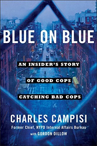 Blue on Blue: An Insider's Story of Good Cops Catching Bad Cops