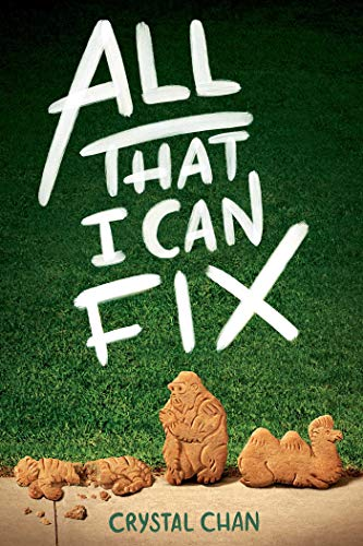 All That I Can Fix
