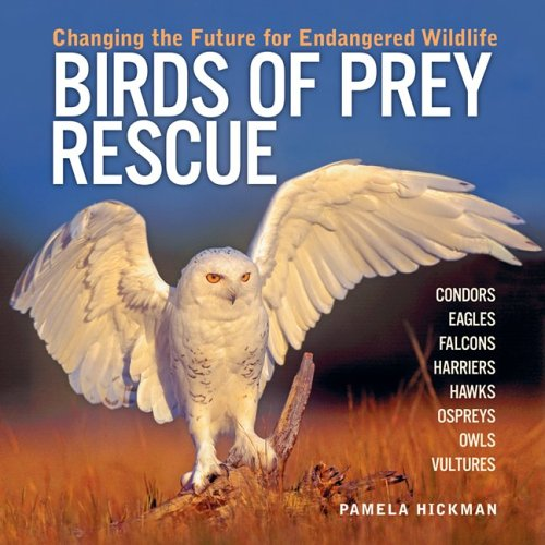 Birds Of Prey Rescue: Changing The Future For Endangered Wildlife (Animal Rescue Series)
