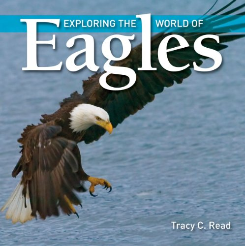 Exploring the World Of Eagles (Exploring the World of)