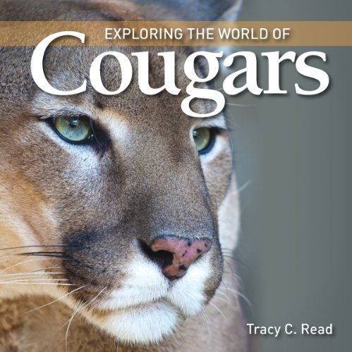 Cougars (Exploring the World of)