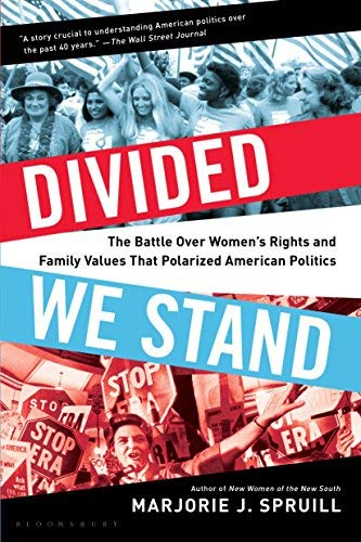 Divided We Stand: The Battle Over Women's Rights and Family Values That Polarized American Politics
