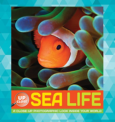 Sea Life (Up Close)