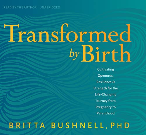 Transformed by Birth: Cultivating Openness, Resilience, and Strength for the Life-Changing Journey from Pregnancy to Parenthood