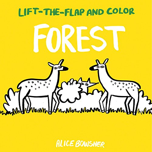 Forest (Lift-the-Flap and Color)